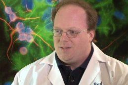 Стволовые клетки человека