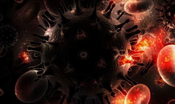 Опухолевые клетки: что это такое, свойства, особенности