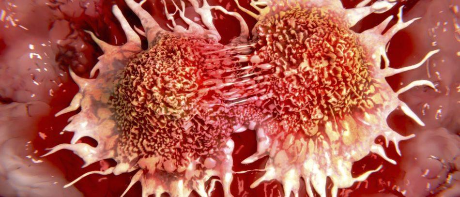 Немного о раковых опухолях