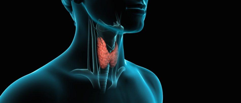 Лечение гипотиреоза: симптомы